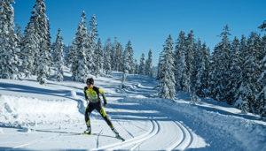 ski fond skating