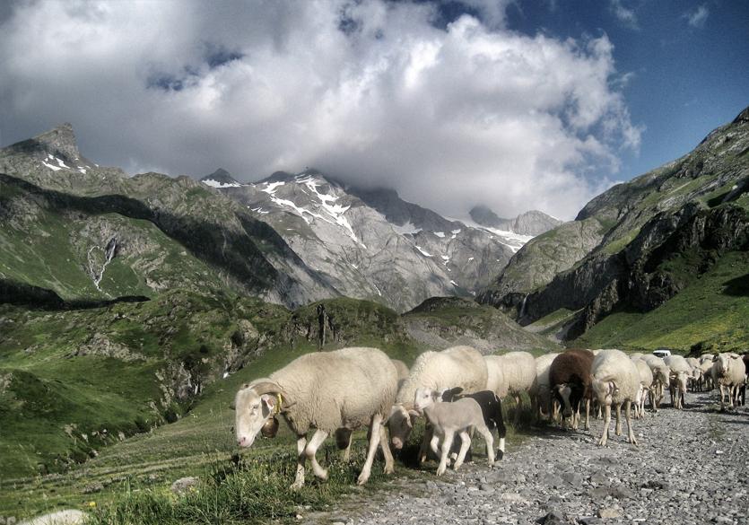 GR10-Pyrenes-orientales