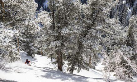Skiez en Utah avec Eider et Ekosport