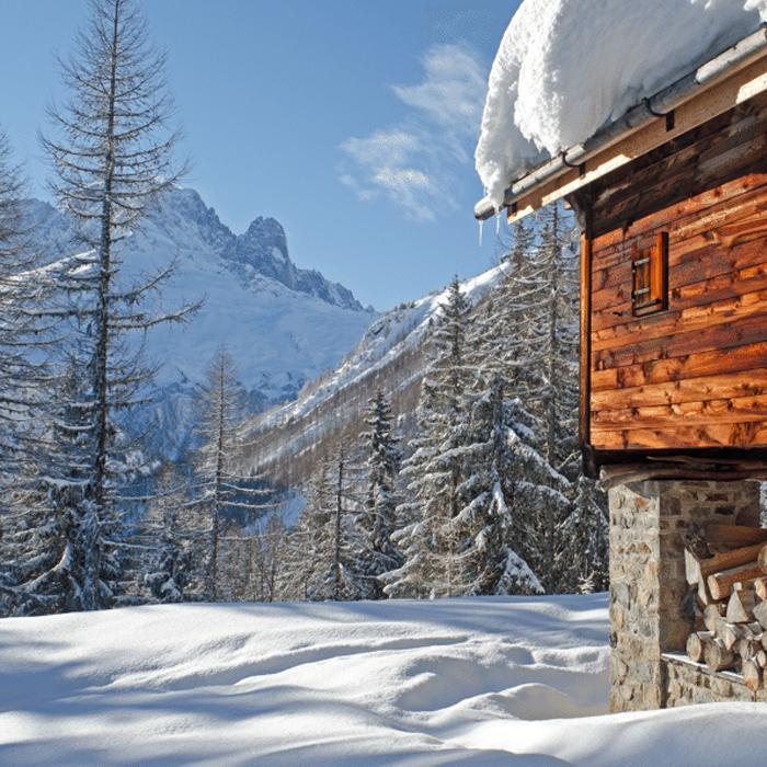 CHAMONIX_bois_neige