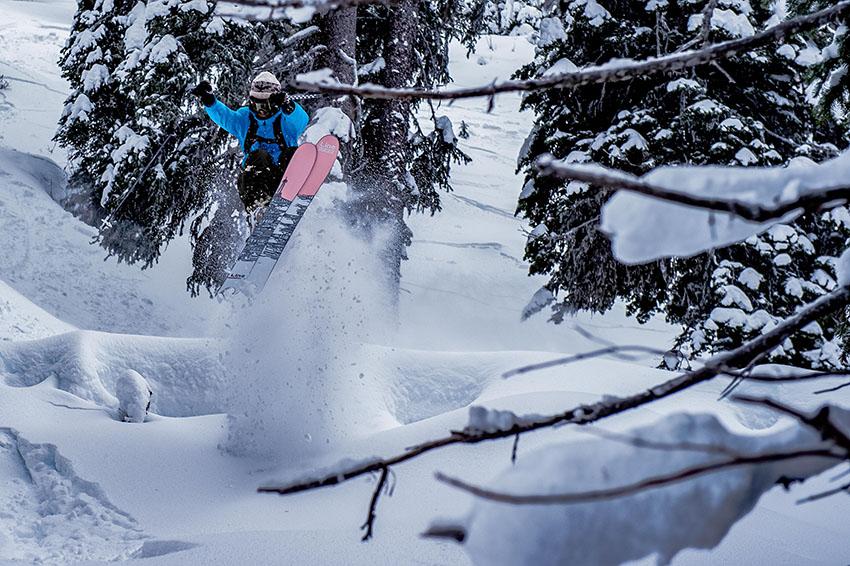 The north face ski